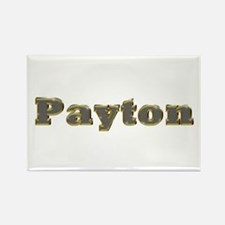 Payton Gold Diamond Bling Rectangle Magnet
