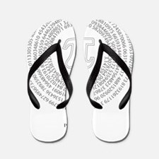 Pi day fashion theme Flip Flops