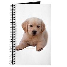 Golden Retriever Puppy Lying Down Journal