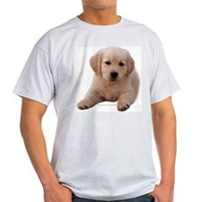 Golden Retriever Puppy Lying Down Ash Grey T-Shirt