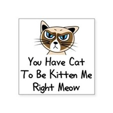 You Have Cat To Be Kitten Me Right Meow (D Sticker