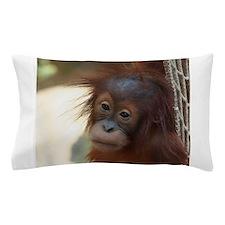 Orang_Utan_2014_1203 Pillow Case