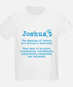 The Meaning of Joshua T-Shirt