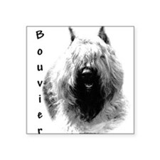 "Cute Bouvier des flandres dog breed Square Sticker 3"" x 3"""