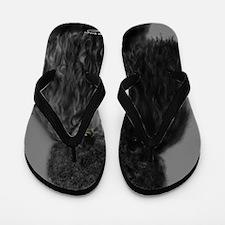 standard poodle black Flip Flops