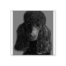standard poodle black Sticker