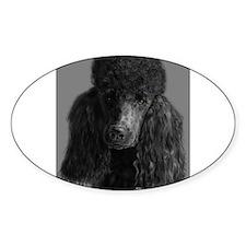 standard poodle black Decal