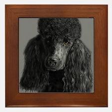 standard poodle black Framed Tile
