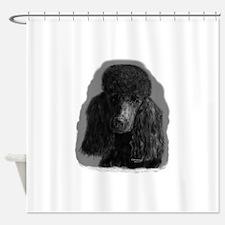 black standard poodle Shower Curtain
