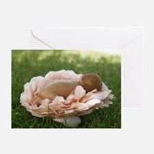 Baby Rose Greeting Cards (Pk of 20 - BLANK INSIDE)