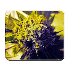 Kush Cannabis Mousepad