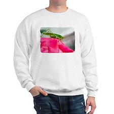 Helaine's Grasshopper Sweatshirt