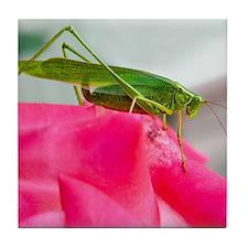 Helaine's Grasshopper Tile Coaster