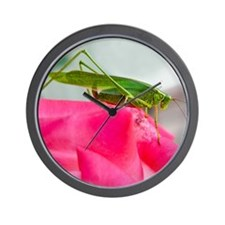 Helaine's Grasshopper Wall Clock