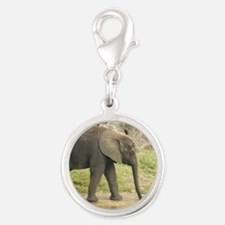 Baby Elephant Charms