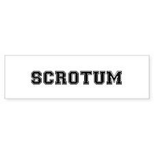 SCROTUM:- Bumper Bumper Sticker