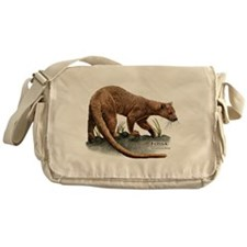 Fossa Messenger Bag