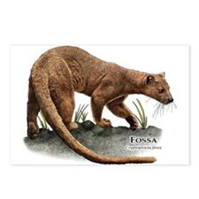 Fossa Postcards (Package of 8)