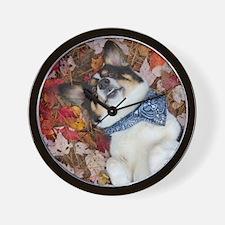 Funny, Cute, Corgi Look Wall Clock