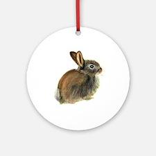 Baby Rabbit Portrait in Pastels Ornament (Round)