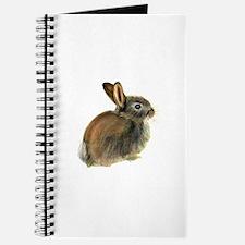 Baby Rabbit Portrait in Pastels Journal