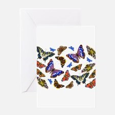 Butterflies and Moths Watercolours Greeting Cards