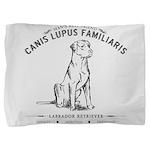 Vintage Labrador Pillow Sham