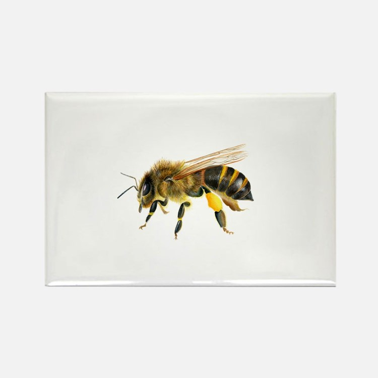 Honey bee watercolour / watercolor painting Magnet