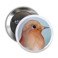 Robin Bird, Robin Redbreast, Watercolour / waterco