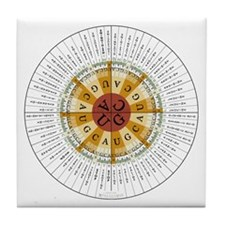 Genetic Code Tile Coaster