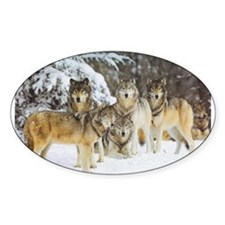 Cool Wolf Decal