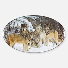 Cute Wolf Decal
