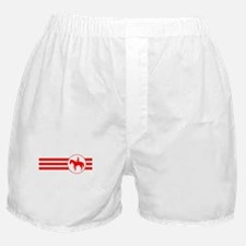 Equestrian Stripes (Red) Boxer Shorts