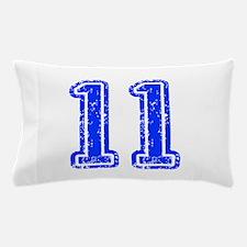 11-Col blue Pillow Case