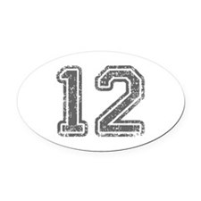 12-Col gray Oval Car Magnet