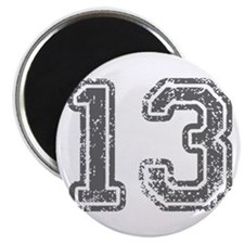 13-Col gray Magnets