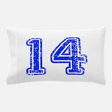 14-Col blue Pillow Case