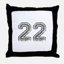 22-Col gray Throw Pillow