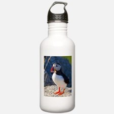 Atlantic Puffin Standing Water Bottle