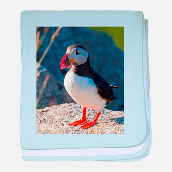 Atlantic Puffin Standing baby blanket