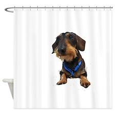 Wirehair Dachshund Shower Curtain