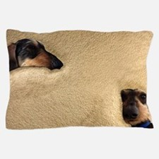 Cute Wire haired dachshund Pillow Case