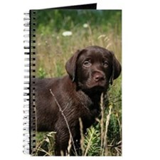 Lab Puppy in a Field Journal