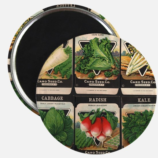 Vegetable Packets Six Magnet