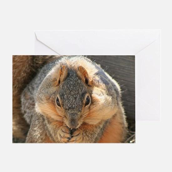 Cheeky Squirrel Greeting Card
