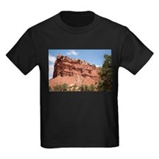 Capitol Reef National Park, Utah, USA 8 T-Shirt