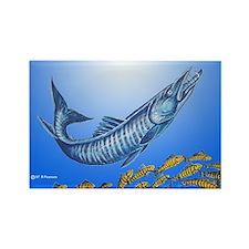 Barracuda Rectangle Magnet