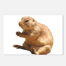 Prairie Dog Postcards (Package of 8)