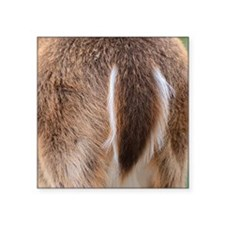 "Deer Tail Square Sticker 3"" x 3"""