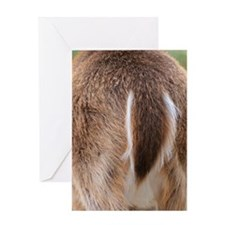 Deer Tail Greeting Card